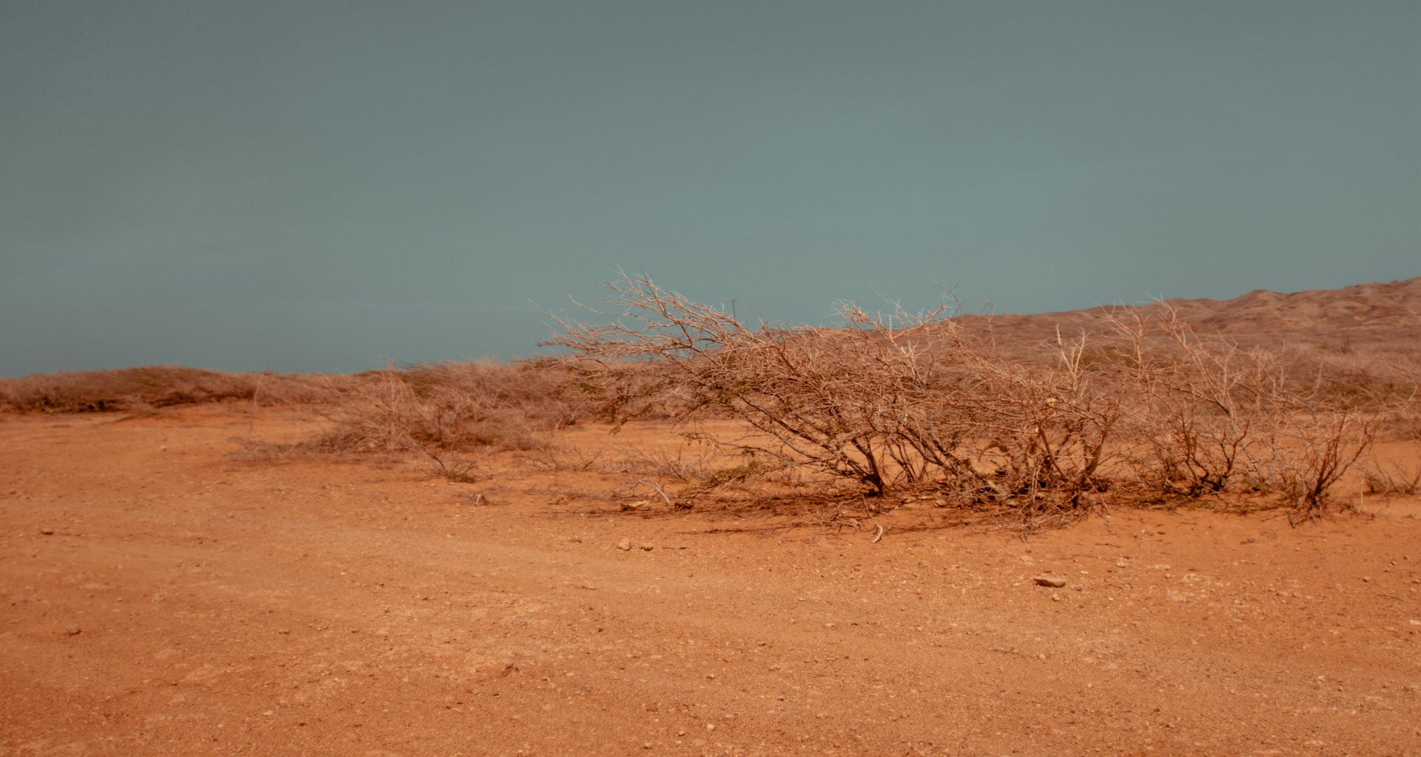 dry and dusty land with a grey sky
